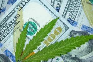 Credit rating Unions and Hemp: Original Federal Steering is Here!