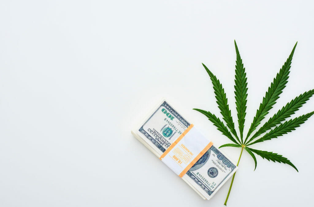 Hashish Fundraising: Seven Key Takeaways from the SEC's New Authorized Investor Rules