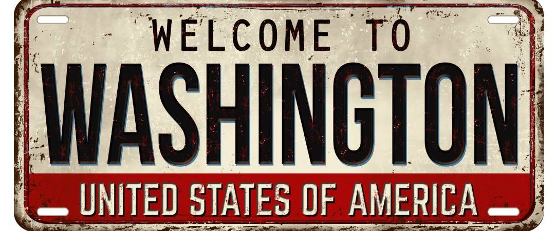 Washington Hashish: Buckle Up for a Brisk 2021 in M&A Exercise