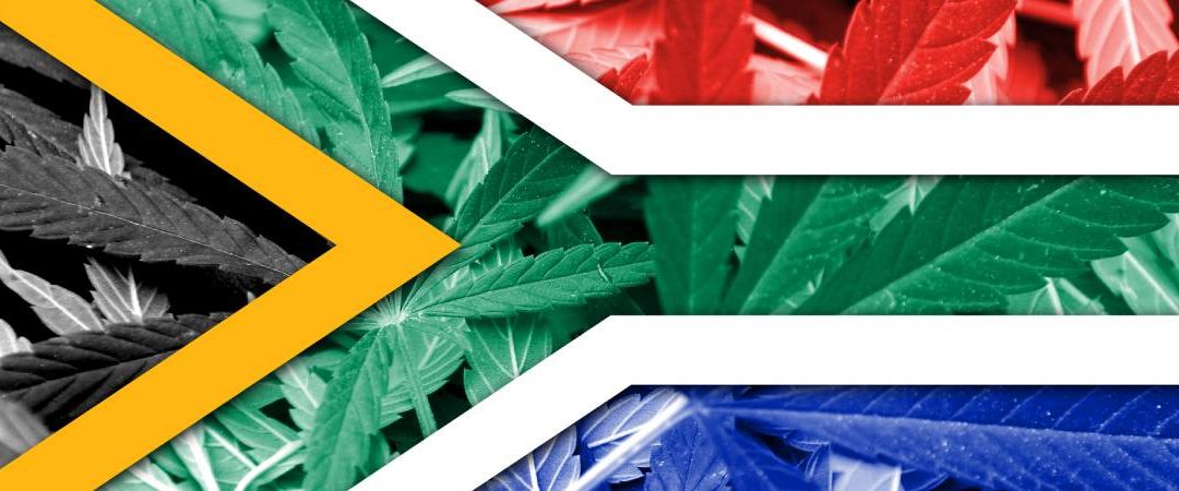 Cannabis in South Africa: The Rainbow Nation Leads the Continent
