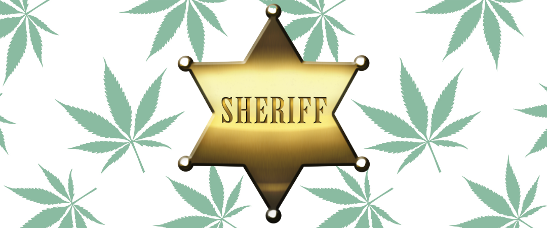 Contemporary York's Cannabis Support an eye on Board – The Contemporary Sheriff in Metropolis