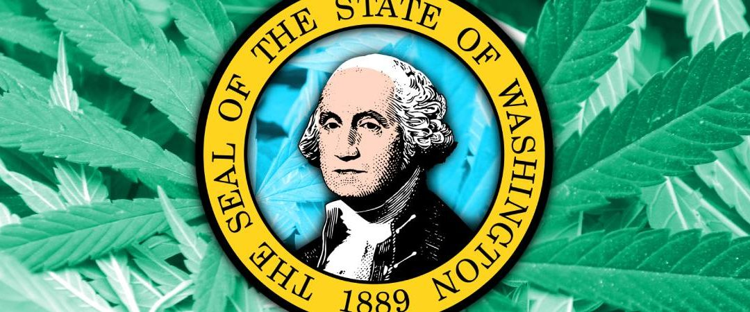Washington Notify Considers the Design forward for Its Cannabis Substitute