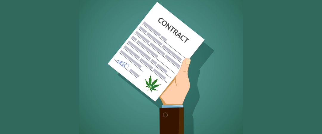 California Hashish Agency Consolidation Will Have an effect on Hashish Contracts