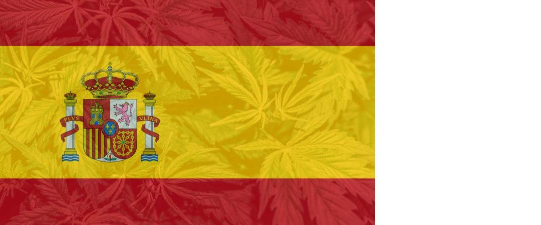 Spain Moves In direction of Scientific Hashish Laws