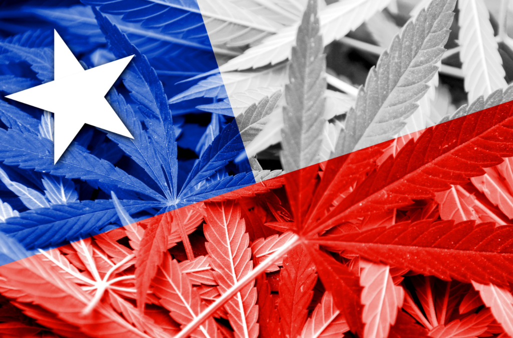 Chile's Fresh Structure: An Opportunity for Hashish?