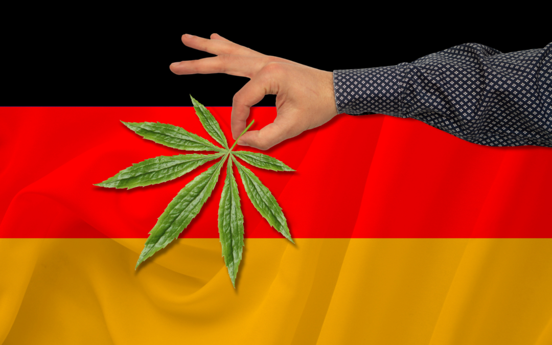Elections and Hashish in Germany: Green All Spherical