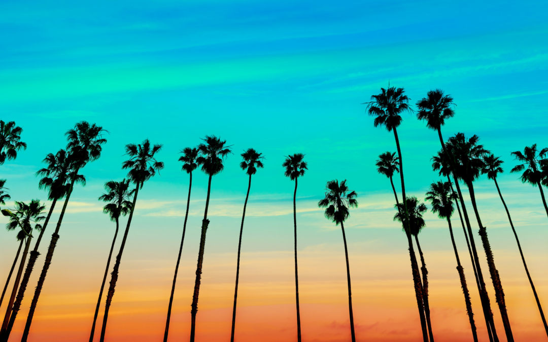California Psychedelic Law Updates